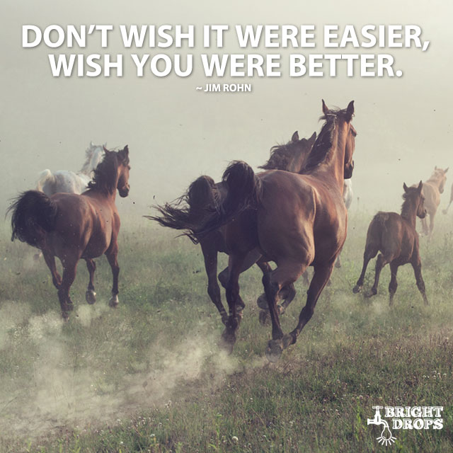 Don't Wish It Were Easier, Wish You Were Better. by Jim Rohn