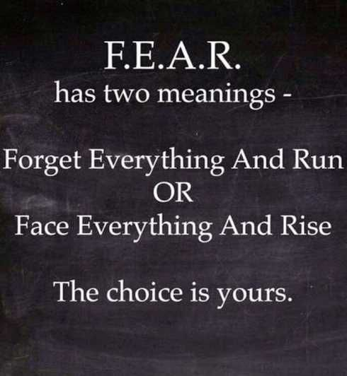 F.E.A.R Has Two Meanings - Forget Everything And Run Or Face Everything And Rise. The Choice Is Yours.