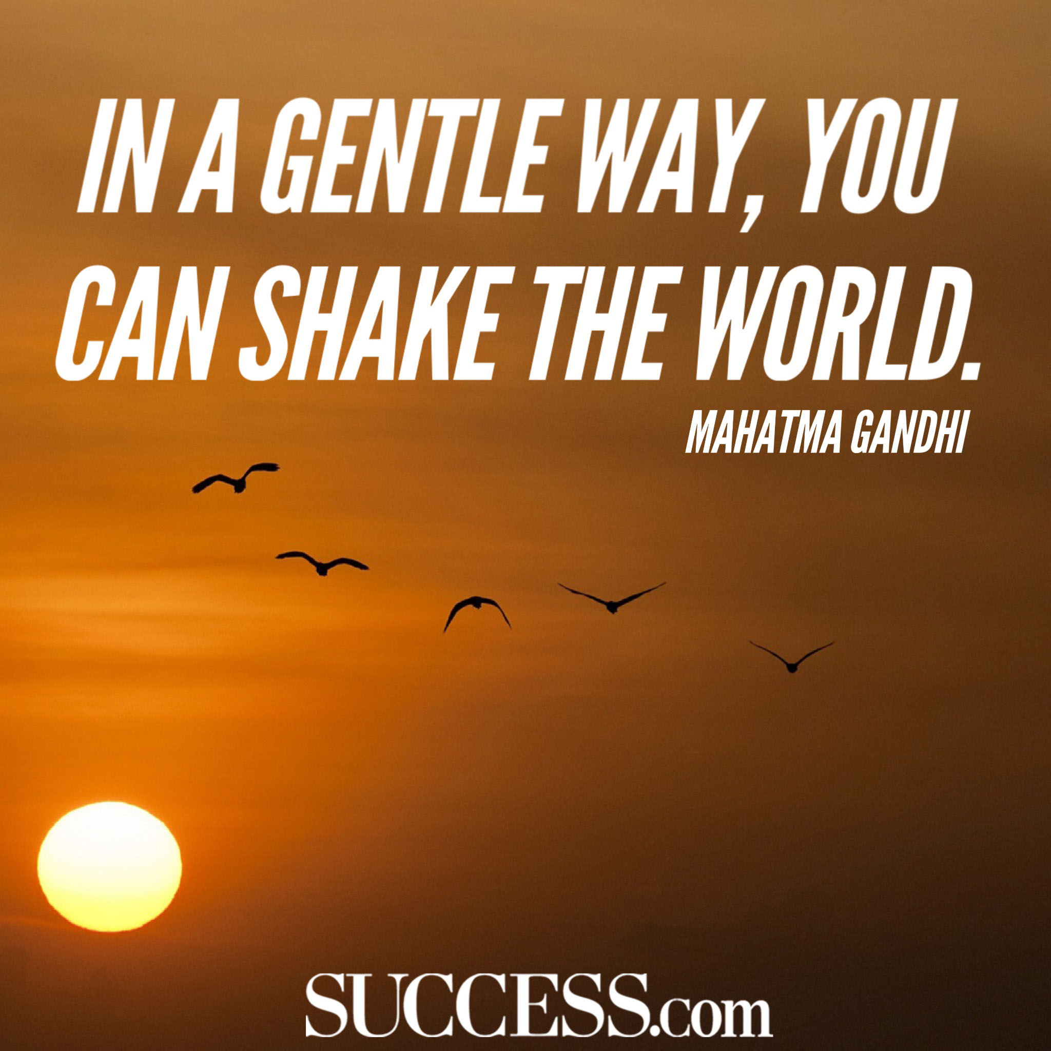 In A Gentle Way, You Can Shake The World. by Mahatma Gandhi