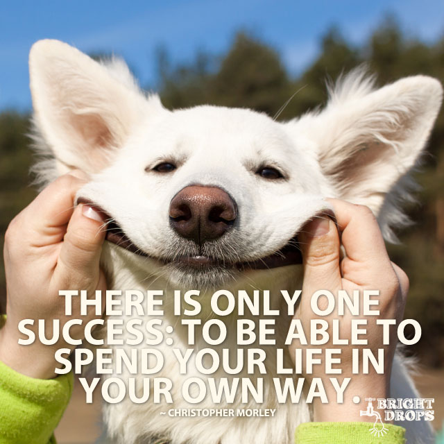 There Is Only One Success: To Be Able To Spend Your Life In Your Own Way. by Christopher Morley